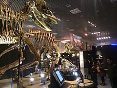 20140131dynosaur2