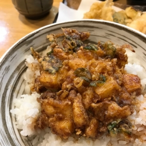 のっけ丼(かき揚げ)