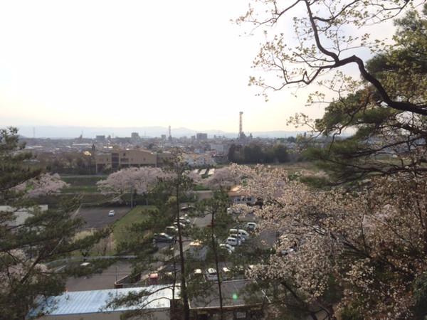 20160406yoshimi100_17