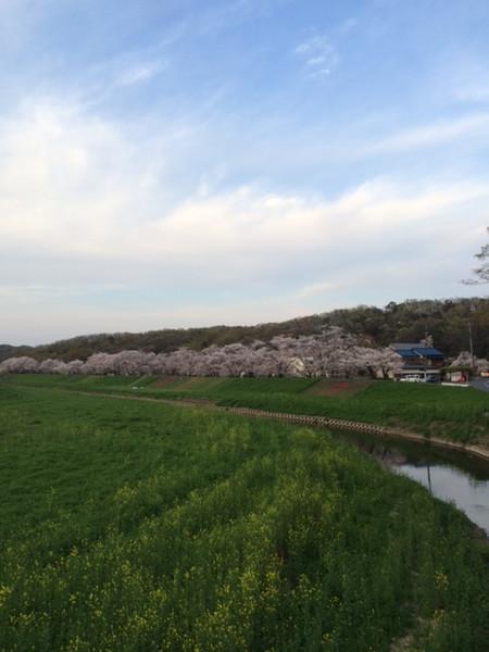 20160406yoshimi100_36