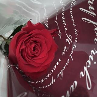 おまけの薔薇